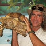 Jungle Terry and Turtle